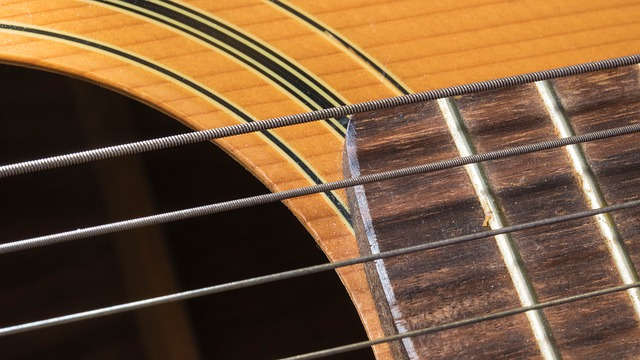 Guitars And How To Learn To Play One Well